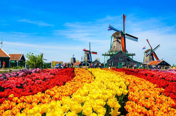Mejores destinos para viajar en Marzo Holanda