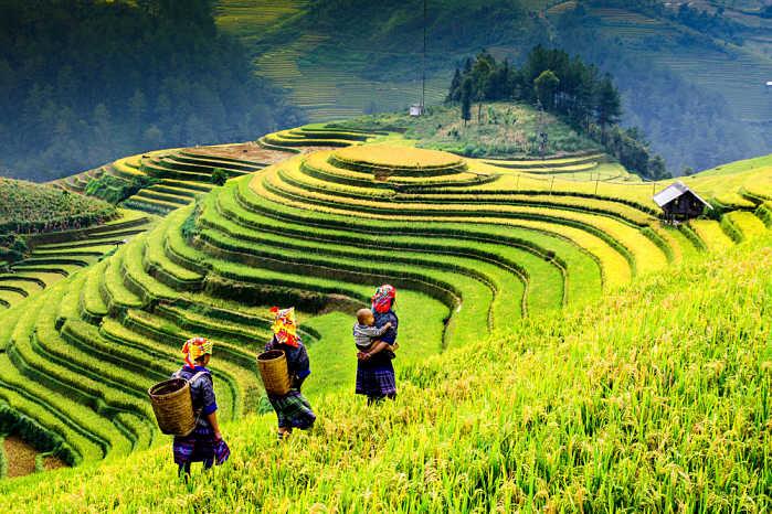 Vietnam y Camboya en 15 días Sapa