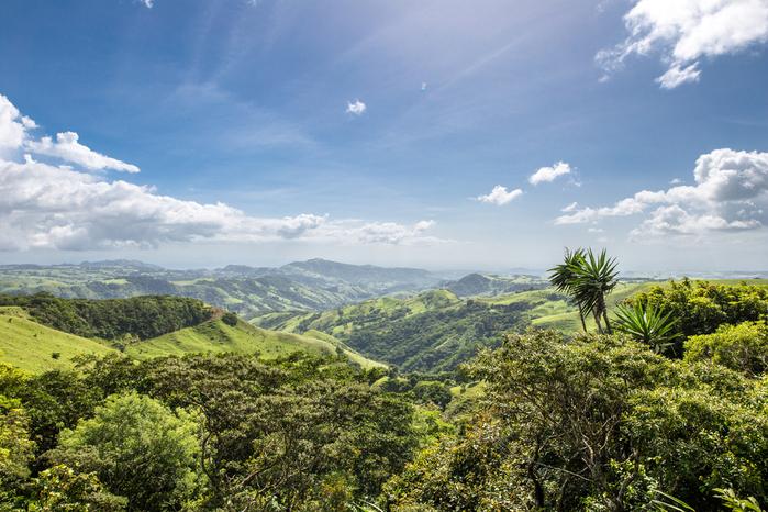 Monte Verde en Costa Rica