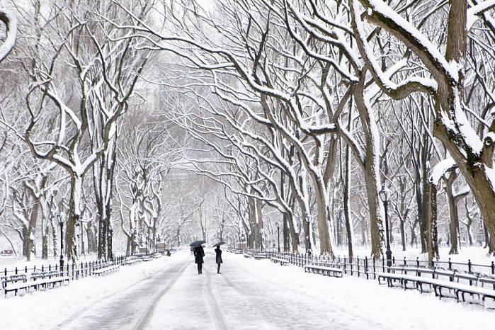 ¿Donde viajar en enero? nueva york