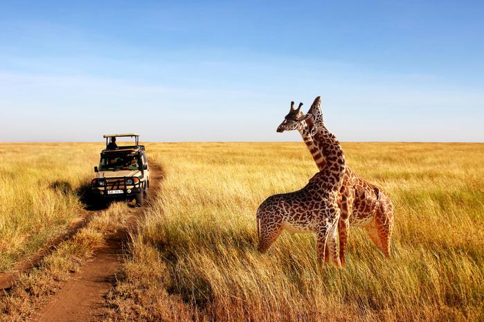 Viajar a Tanzania en enero