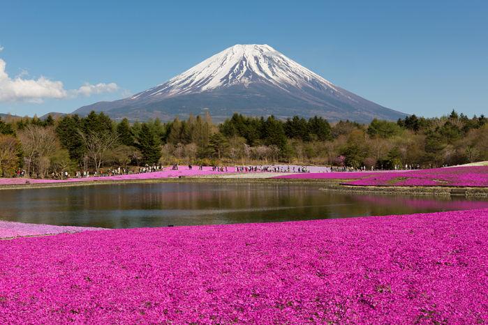 vista del monte fuji en verano
