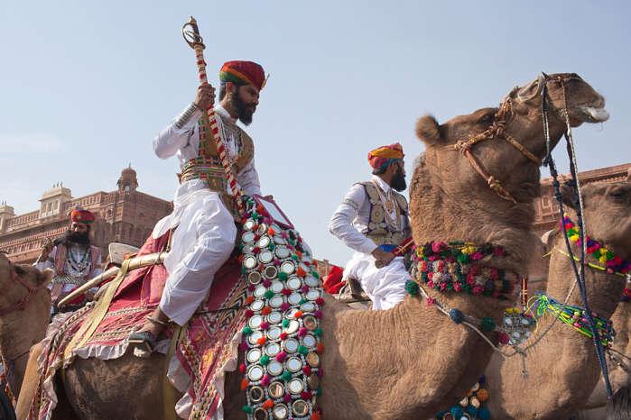 Festival del camello en la India