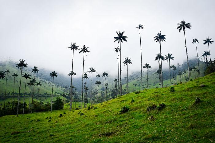 ¿Es seguro viajar a Colombia?