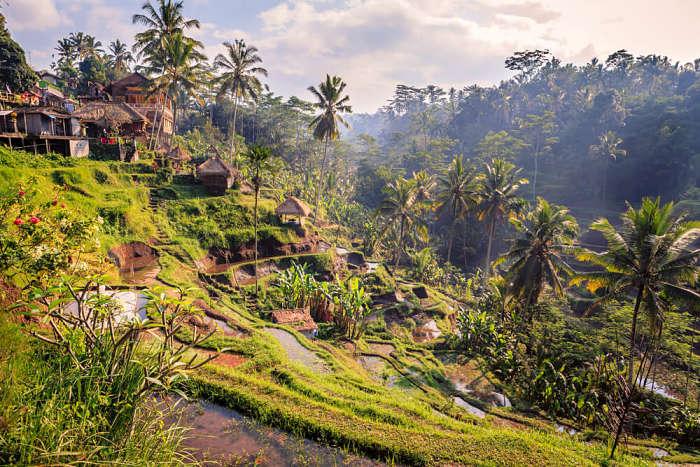 Mochilero en Bali