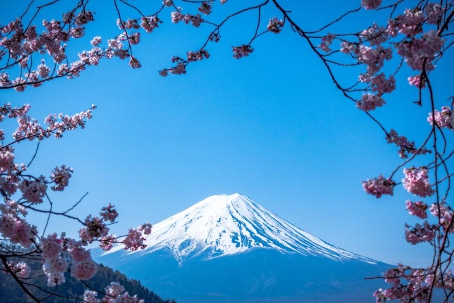 Monte Fuji Sakura Japon