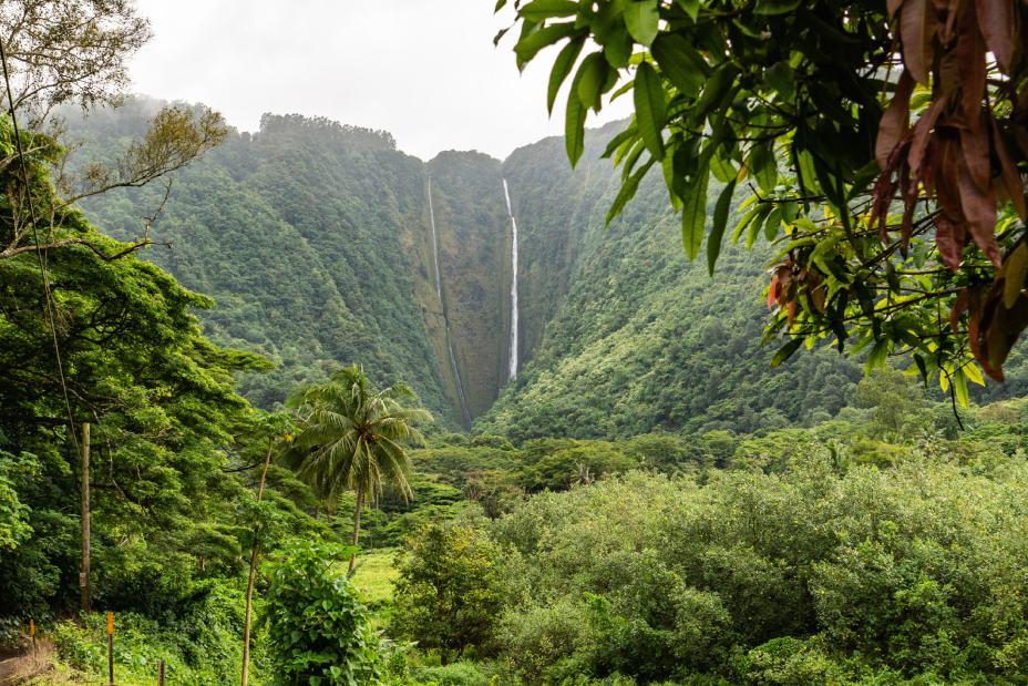 waipio valley hawai