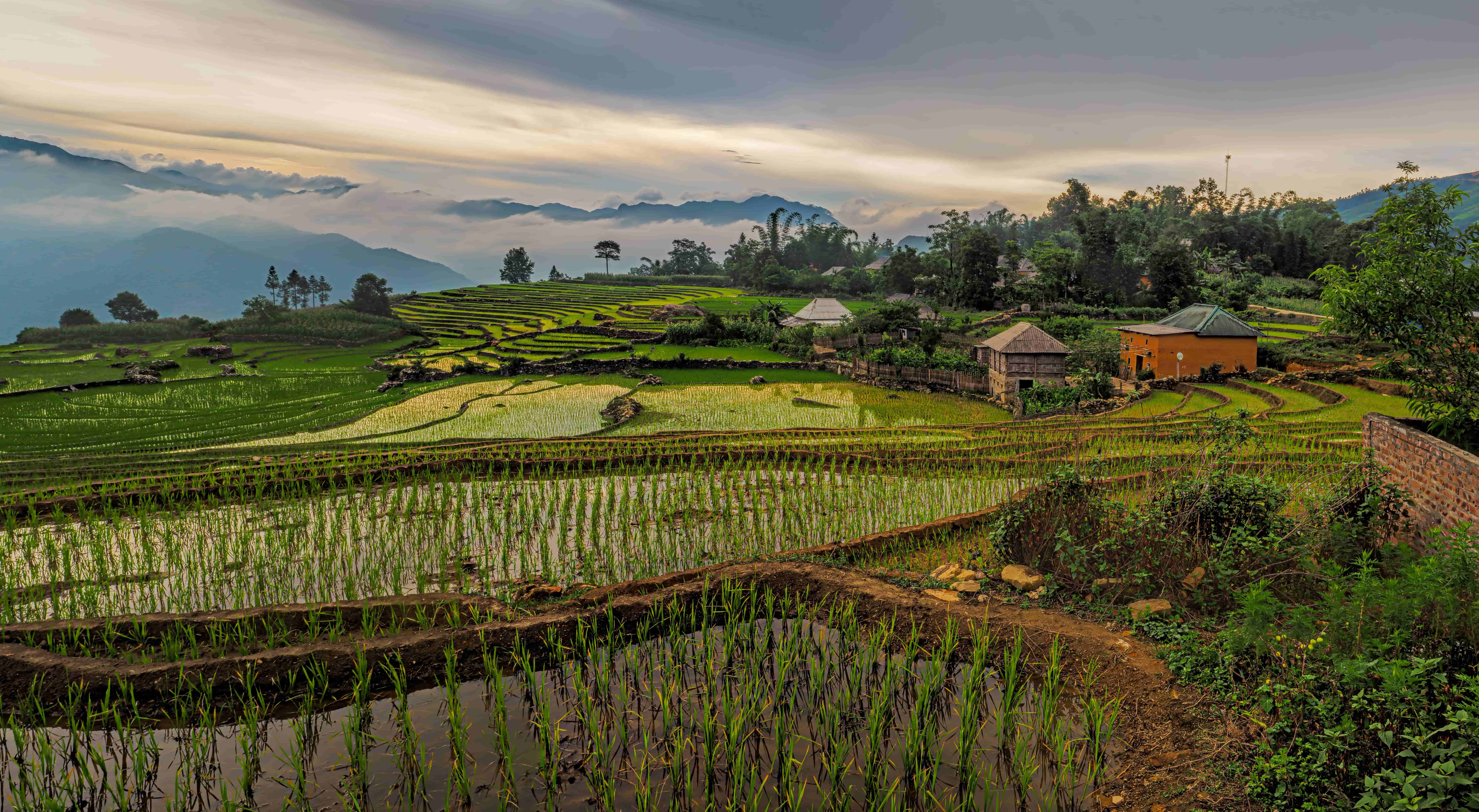 Vietnam   Viajar en 2021