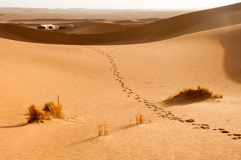 ruta desierto sahara