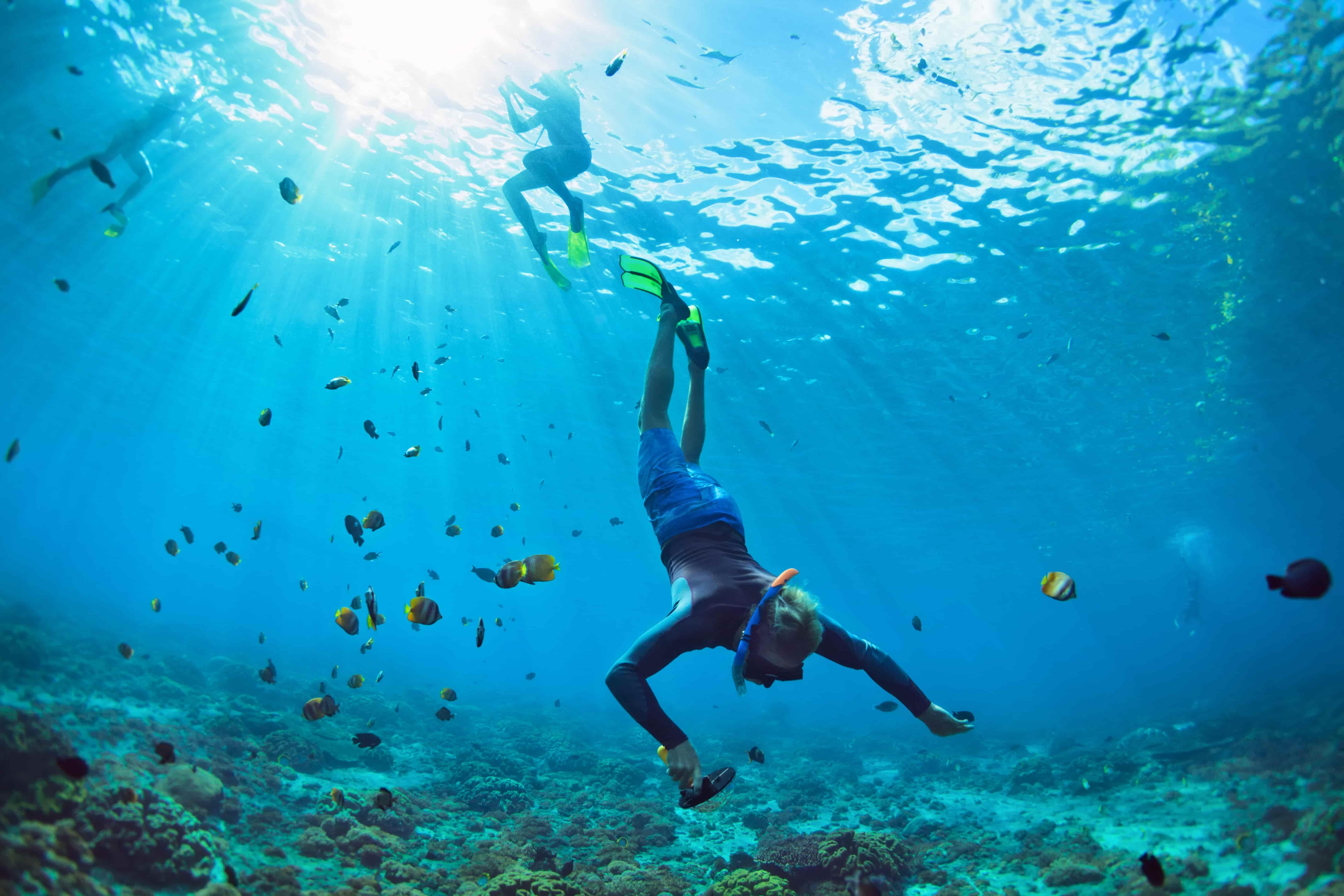 donde bucear en las islas maldivas