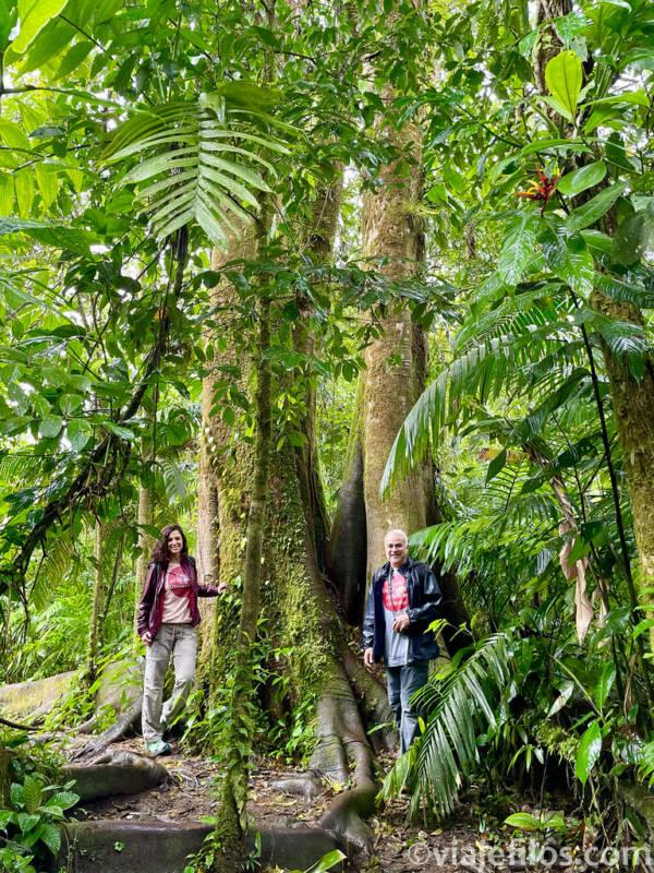 destino free covid Costa Rica